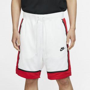 Мужские баскетбольные шорты из сетчатого материала Nike Sportswear AR2418-100