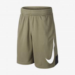 Баскетбольные шорты для подростков Nike Dri-FIT 892362-222