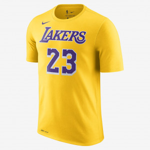Футболка Nike LeBron James Los Angeles Lakers Dri-FIT Tee