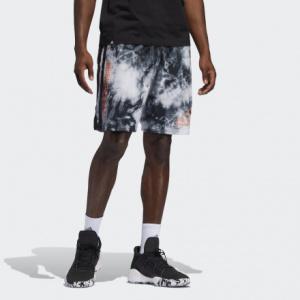 Мужские шорты adidas Daniel Patrick x Harden FR5637